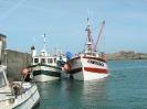 Plougasnou - Port du Diben